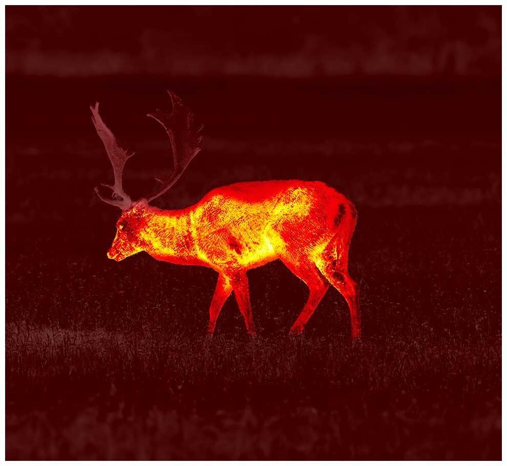 Red Monochrome