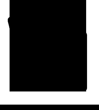 Pulsar Forward F455 Digital NV Scope Attachment